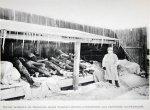 Manchurian Plague 1910 photo